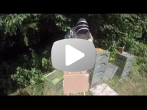 Honningfratagning i opstablingsstade