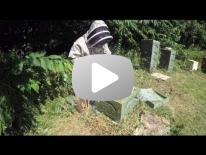 Varroabehandling af bifamilier i opstablingstade